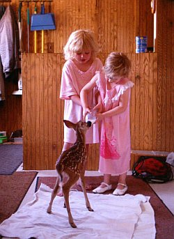 Kids with a Fawn