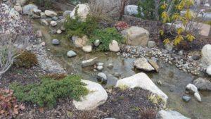 A little stream in the Japanese garden
